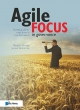 agile focus in governance